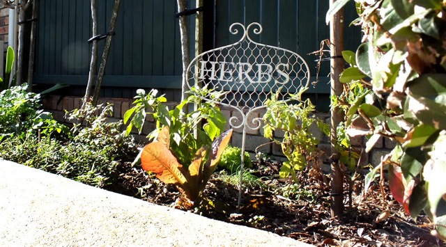 bermagui accommodation garden of herbs at Captain's Quarters